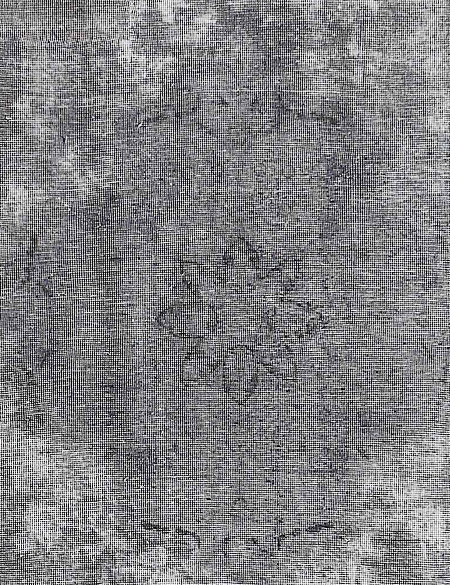 Tappeto Vintage  grigo <br/>293 x 229 cm