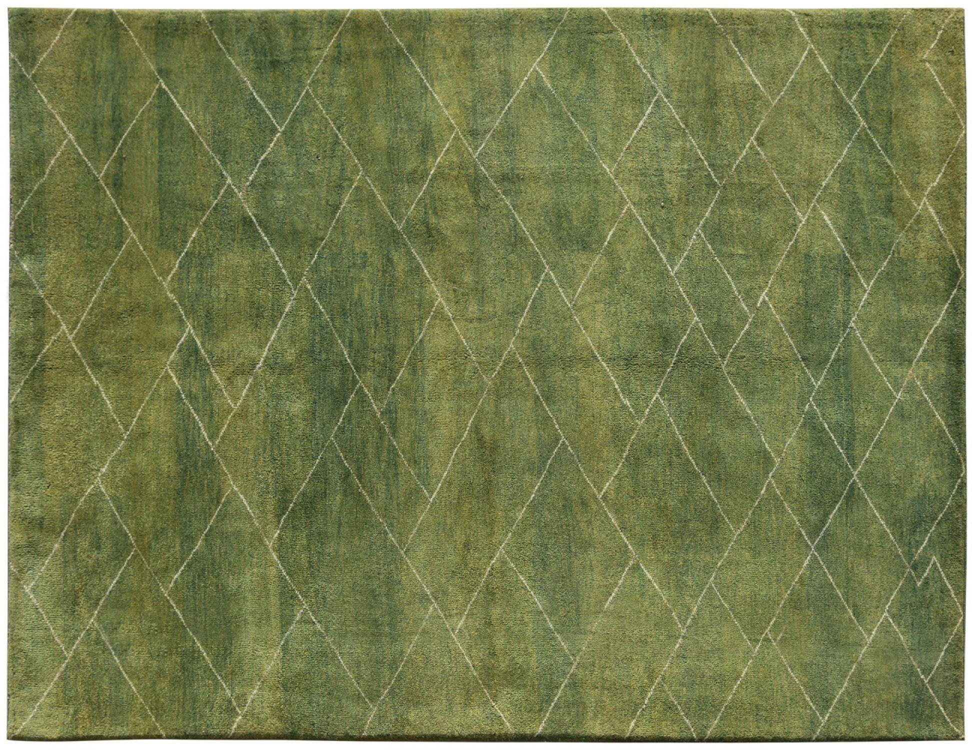 Moderne Teppiche  grün <br/>296 x 194 cm