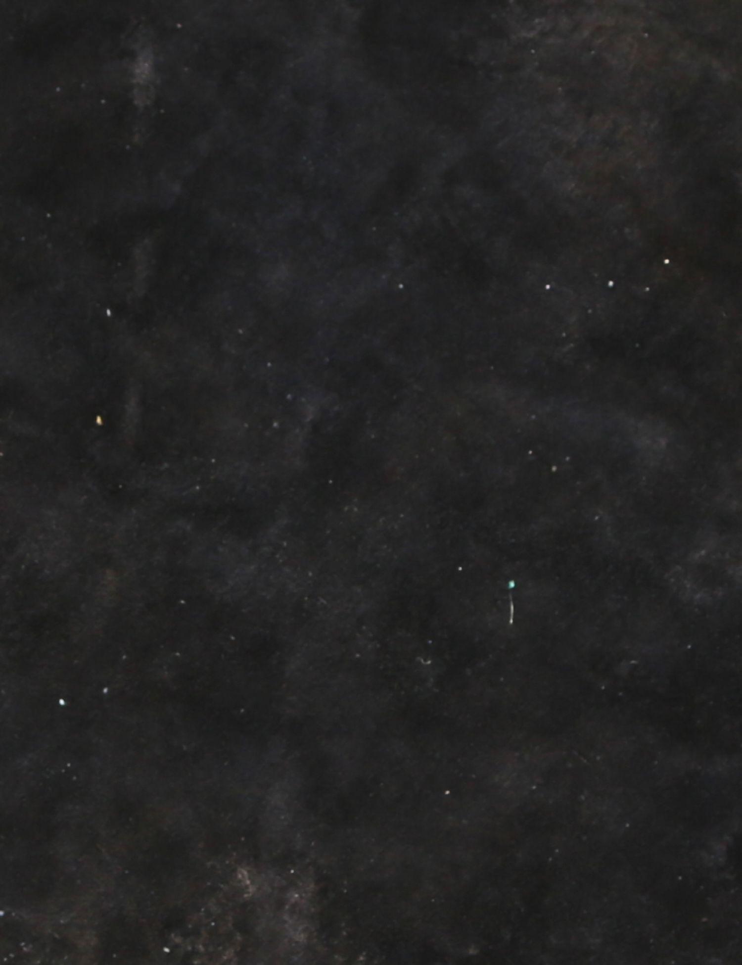 Vintage Carpet  black <br/>288 x 288 cm